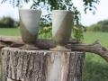 poteriesdanielchavigny-collvert-04